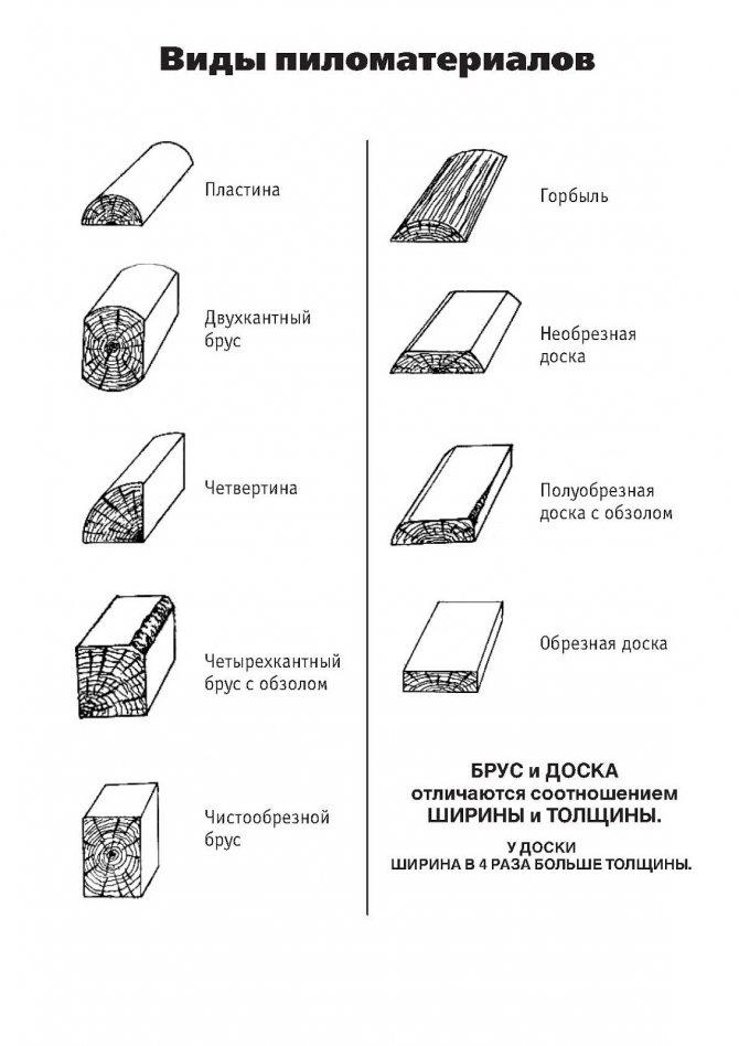 Классификация и стандартизация древесных материалов и лесной продукции - студизба
