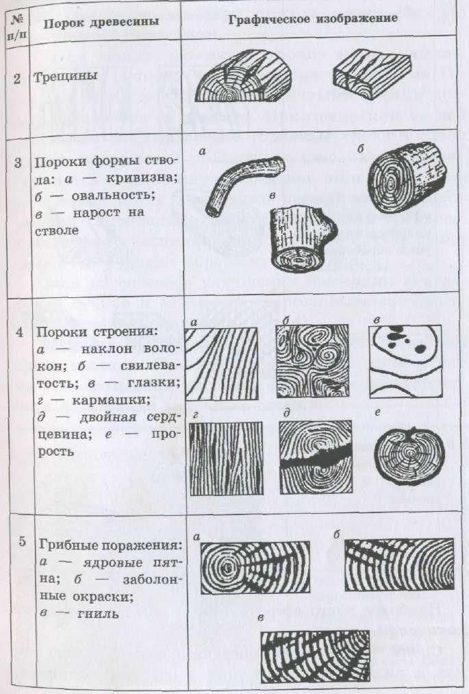 Качество древесины и лесопродукции. часть 5