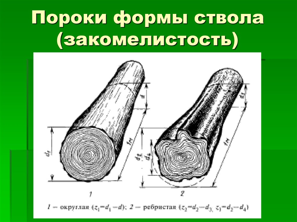 Качество древесины и лесопродукции. часть 3