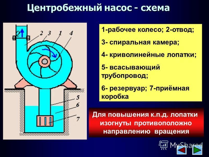 Центробежный водяной насос: виды, принцип действия   гидро гуру