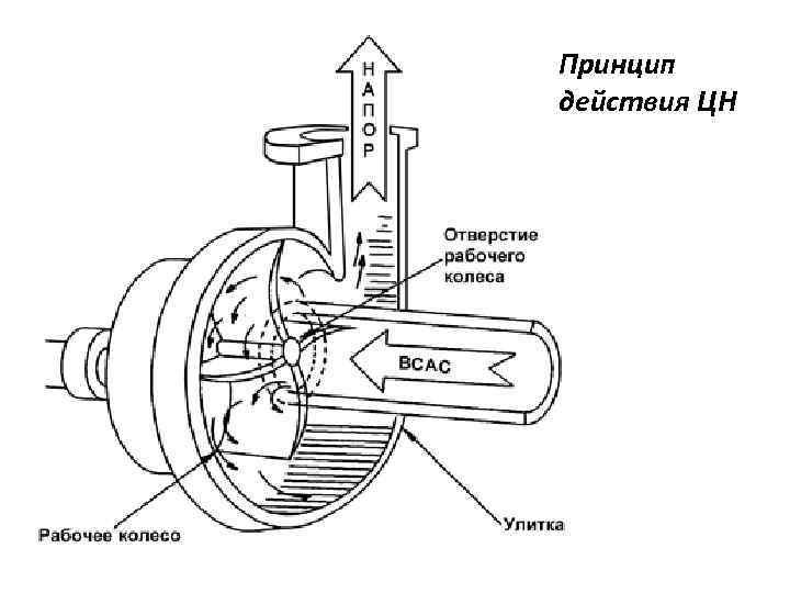 Устройство, принцип действия и классификация центробежных насосов