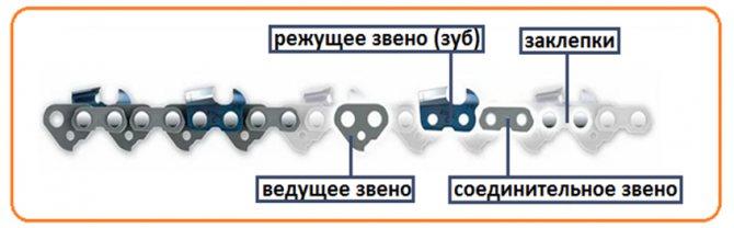 Цепь для бензопилы - маркировка и пособие для начинающих по подбору цепей
