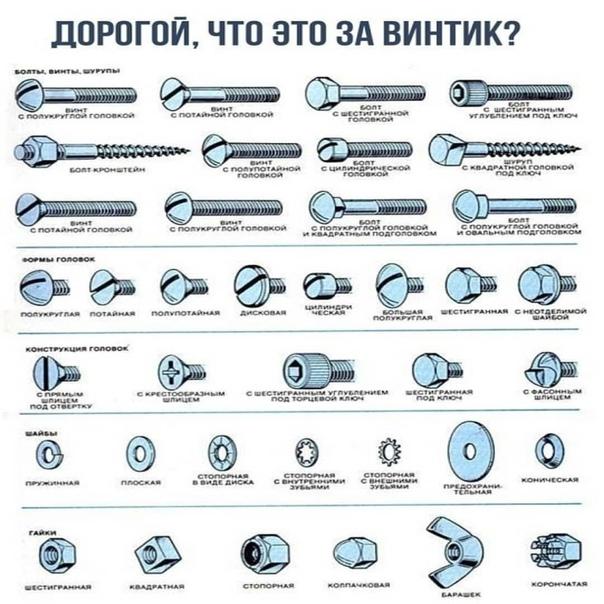 Виды болтов и их классификация :: syl.ru