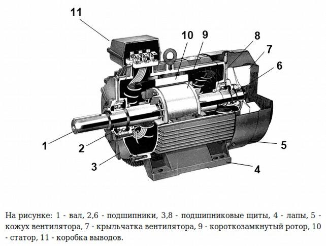 Мотор для шуруповерта 12 вольт характеристики