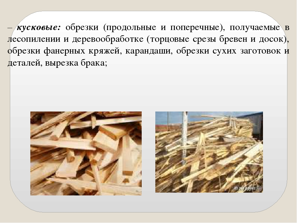 Переработка опилок как бизнес: вывоз, утилизация, производство
