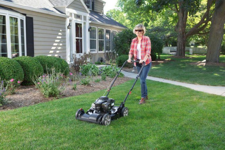 18 лучших газонокосилок - рейтинг 2021 года