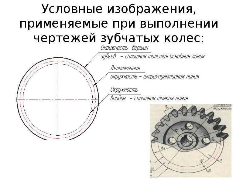 Зубчатое колесо в компасе