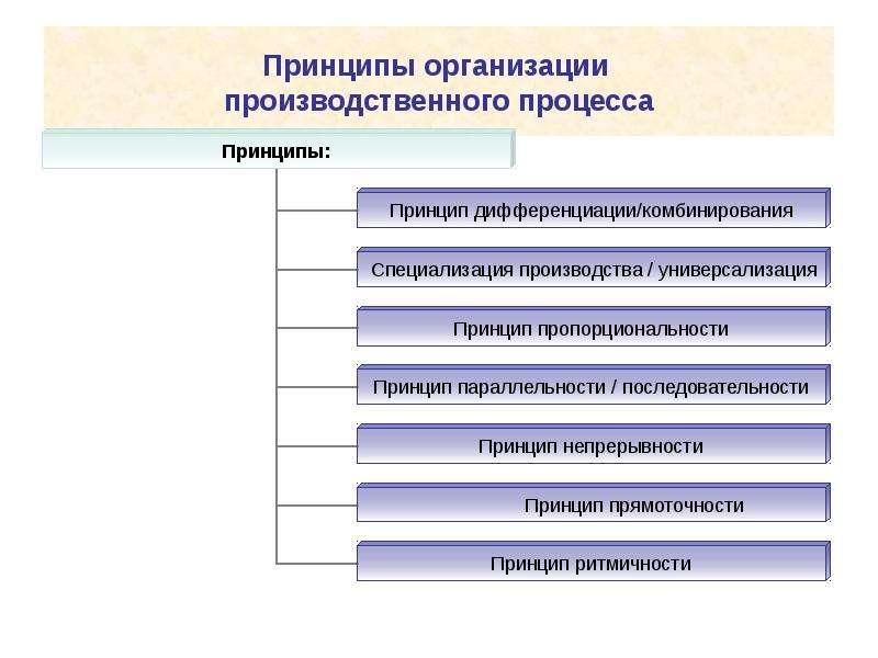 Организация производственного процесса