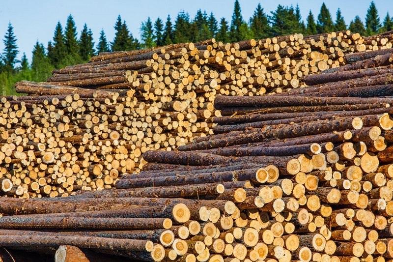 Все о лесоматериалах
